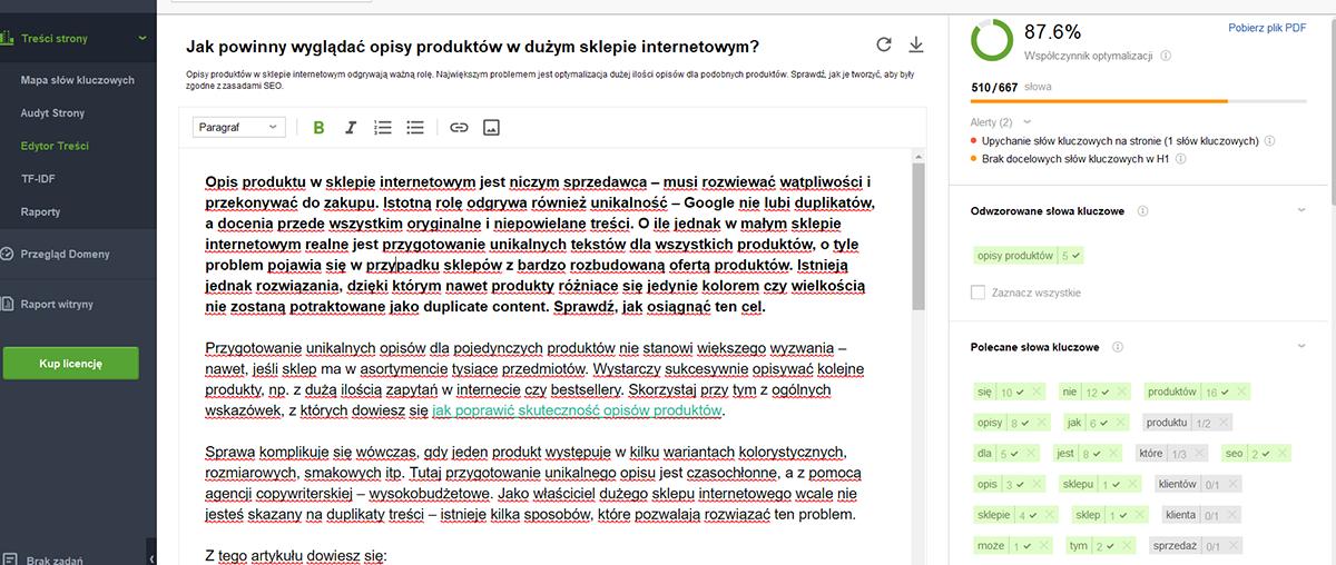 SEO Content Editor - szczegółowa analiza wpisanego tekstu