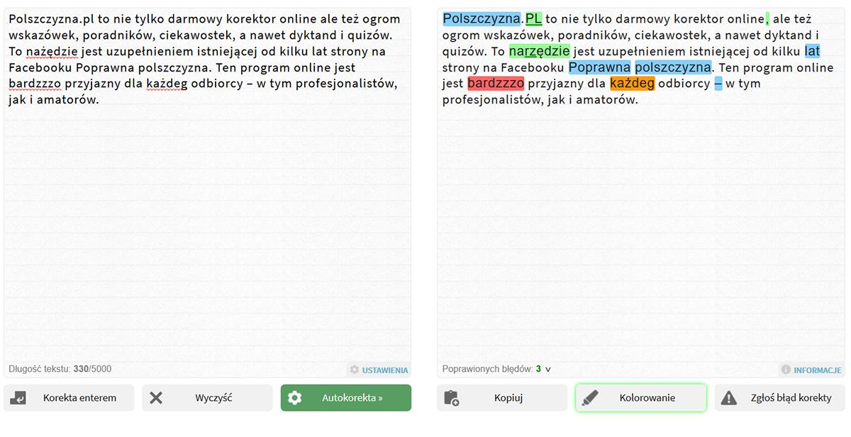 Polszczyzna.pl -  wygląd programu do sprawdzania tekstu zawierający miejsce na tekst